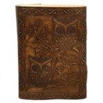 Buff003 Owl3